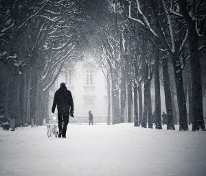 snow-winter-walk-dog-lonely-friend