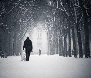 snow-winter-walk-dog-lonely-friend