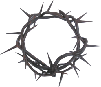 Crown-of-Thorns-psd81005